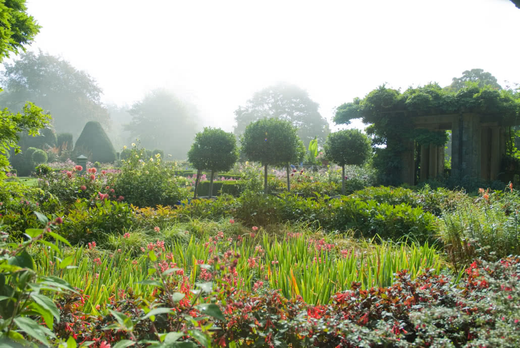 Italian Gardens on a foggy day