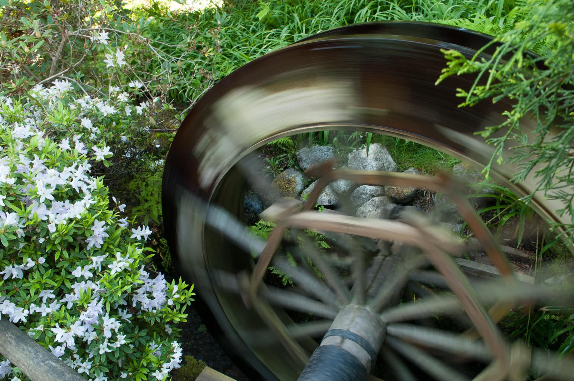 Water wheel in Japanese Garden